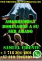 HECHIZOS Y AMARRES DE AMOR A DISTANCIA