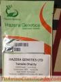 Semillas de repollo escazu semilla de tomate DRD8151