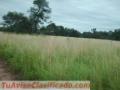 Formosa: a unos 60 km de Las Lomitas: Campo Aguará en venta 2743 has