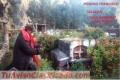 ELIMINO A TU RIVAL - ENEMIGOS INDESEABLES ( trabajos en cementerio )