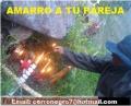 AMARRES POSEÍDOS ( BRUJOSS )
