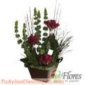 Arreglos Florales Flores Mi Pasion