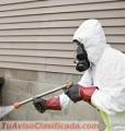 Empresa de fumigacion de plagas