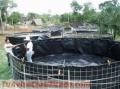 instalallation-of-fish-breeding-tanks-instalacion-de-tanques-para-cria-de-peces-5.jpg