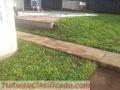 Siembra de grama y mantenimiento a jardín