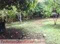linda-propiedad-en-mansion-nicoya-guanacaste-3.jpg