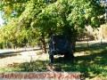 parcela-de-11-hectareas-con-casaagualuz-galpon-arboles-nativos-1.JPG