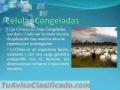 tratamiento-de-enfermedades-graves-con-terapia-celular-multiembrionaria-3.jpg
