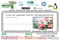 TV AOC 48'' LE48H454F LED/FULL HD/USB/HDMI/DIGITAL