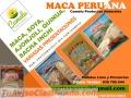 MACA PERUANA VENTA – A NIVEL NACIONAL Y EXPÓRTACION PERU 2016