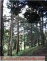 Hermoso terreno en San José Pinula, Aldea Cienega Grande, a 10 min de casco urbano