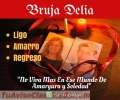BRUJA VIDENTE DELIA +573114504503 TRABAJOS EFECTIVOS SOMETO AMARRO DOBLEGO Y DOMINO