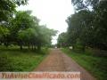 Jacó | Hermosos Lotes de 1.500 metros en Lagunillas muy cerca de Orotina y Puntarenas