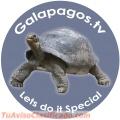 galapagos-playero-1.jpg