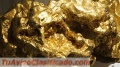 sell-gold-mine-in-colombia-vendo-mina-de-oro-en-colombia-4.jpg