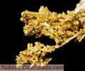 sell-gold-mine-in-colombia-vendo-mina-de-oro-en-colombia-2.jpg