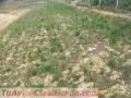 Erosion laminar colombia