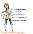 Ele cleaning services