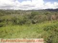 Vendo 6000 m2 de Terreno en plena sierra de Falcon, Venezuela. Agradable clima de montaña