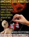 CURANDERO Y SACERDOTE MAYA 65 AÑOS RESLIZANDO AMARRES 011502-50372396