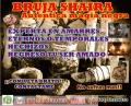 AUTENTICA MAGIA NEGRA, AMARRES DE AMOR CON FOTO 00502-57134533