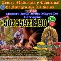 Experiencia de 30 años desde Samayac En Guatemala Maestro Jesùs whatsapp 011 502 55928390