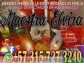 MAESTRA ELVIRA +573157273240REALIZO TODA CLASE DE TRABAJOS AL NIVEL NACIONAL INTERNACIONAL