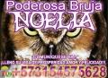 UNICA Y EXPERTA EN TRABAJOS DE AMOR BRUJA NOELIA 3154575628