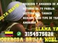 BRUJA NOELIA RECONOCIDA EXPERTA POR SUS GRANDES RESULTADOS 3154575628
