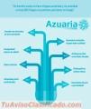Azuaria Agencia SEO en Mexico Posicionamiento Web AdWords