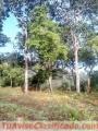 preciosos-terrenos-en-venta-en-chimaltenango-sin-enganche-2.jpg