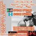 AMARRES, DOMINIOS Y SOMETIMIENTOS DE AMOR (00502) 57134533