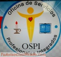 Oficial Servicios Profesionales Integrados  Servicios Especializados
