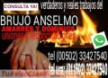 VERDADEROS Y REALES TRABAJOS PARA EL AMOR DEL BRUJO ANSELMO (011502) 33427540