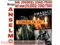 BRUJO ANSELMO... SECRETOS MISTICOS PARA EL AMOR (011502) 33427540