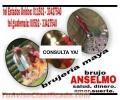 BRUJERIA MAYA SALUD, DINERO, AMOR, SUERTE (011502) 33427540
