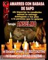 BRUJO ANSELMO, AMARRES CON BABASA DE SAPO (011502) 33427540