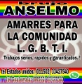 AMARRES PARA LA COMUNIDAD L.G.B.T.I. (011502) 33427540