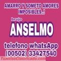 BRUJO ANSELMO... AMARRO Y SOMETO AMORES IMPOSIBLES (00502) 33427540