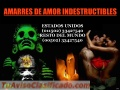 BRUJO ANSELMO... AMARRES DE AMOR INDESTRUCTIBLES (00502) 33427540