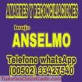 BRUJO ANSELMO... AMARRES Y RECONCILIACIONES (00502) 33427540