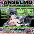 BRUJO ANSELMO, AMARRES CON MAGIA VUDÚ EN 24 HORAS 00502-33427540