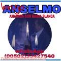 BRUJO ANSELMO, TRABAJOS DE AMORCON MAGIA BLANCA EN 24 HORAS 00502-33427540