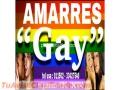 BRUJO ANSELMO... AMARRES PARA LA COMUNIDAD L.G.B.T.I. (011502) 33427540
