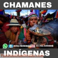 Chamanismo, rituales de prosperidad y brujería indígena 00502-50500868