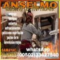 ANSELMO BRUJO DE LOS PANTEONES  00502-33427540