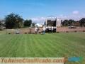 venta-de-pasto-para-canchas-de-futbol-jardines-areas-verdes-3.jpg