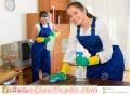 Personas serias para limpieza y pintura