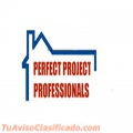 Perfect Project Professionals