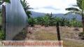 Vendo linda propiedad con una vista increíble en La Margot de Turrialba, 5092 mts2 .